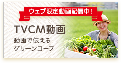 TVCM動画